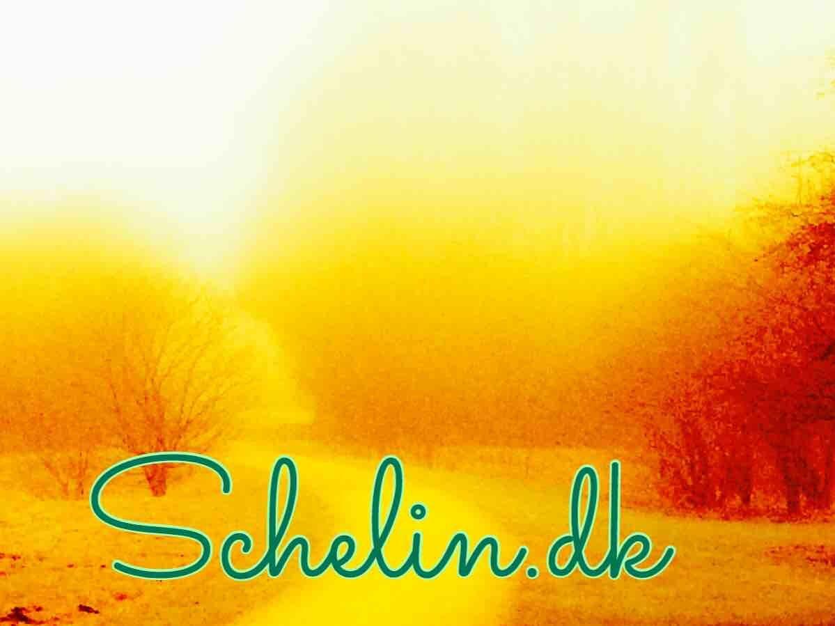 Schelin
